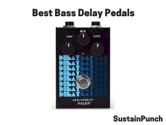 Best Bass Delay Pedals