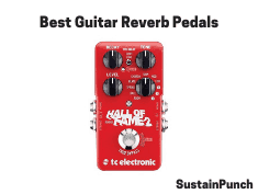 Guitar Reverb Pedals and Processing Units